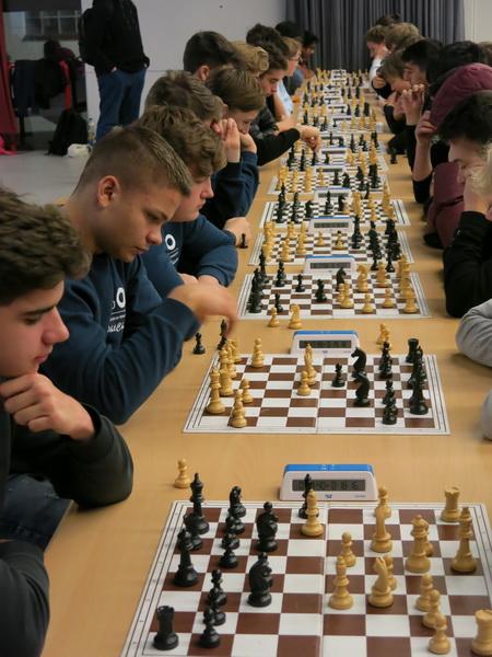 Schach macht klüger
